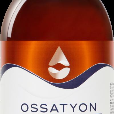 Ossatyon