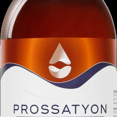 Prossatyon