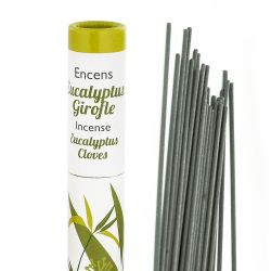 Eucalyptus – Girofle