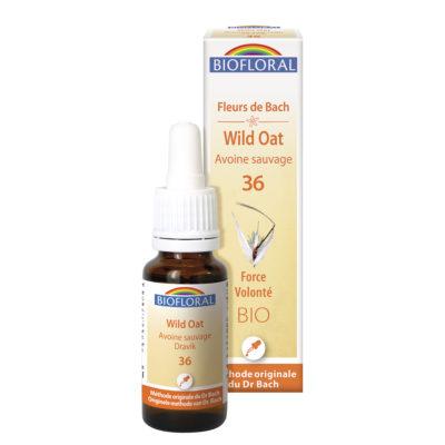 Wild oat n°36