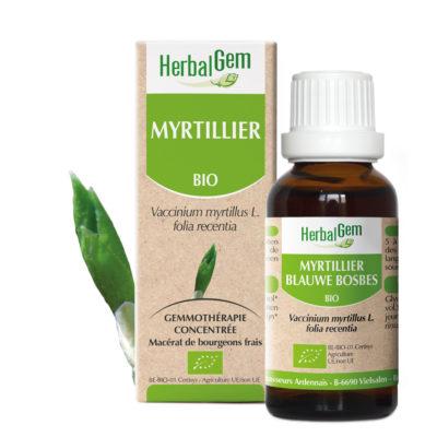 Myrtillier